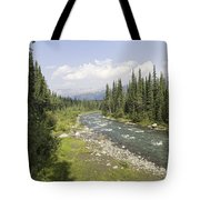 River In Denali National Park Tote Bag