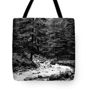 River In The Mountains Tote Bag