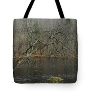 River In The Spring Tote Bag