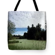 River Of Algae And Stippled Clouds Tote Bag