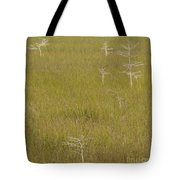 River Of Grass 1a Tote Bag