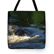 River On The Rocks II Tote Bag