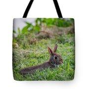 River Rabbit Tote Bag
