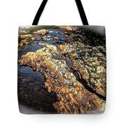 River Rock Tote Bag