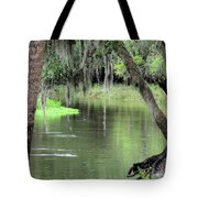 River Scenic Tote Bag