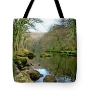 River Teign - P4a16010 Tote Bag