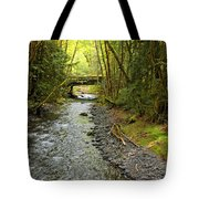 River Through The Rainforest Tote Bag