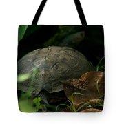 River Turtle 2 Tote Bag