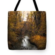 River Views Tote Bag