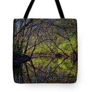 River Walk Reflections Tote Bag