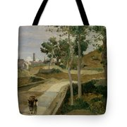 Road From Volterra Tote Bag