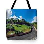 Road In Park Tote Bag