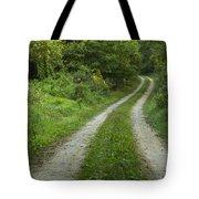 Road In Woods 1 D Tote Bag