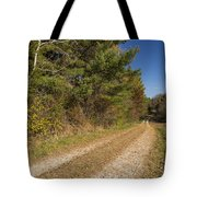 Road In Woods Autumn 6 Tote Bag
