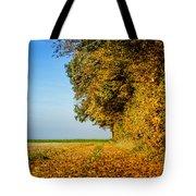 Road Of Leaves Tote Bag