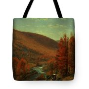Road Through Belvedere Tote Bag