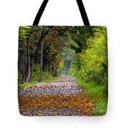 Road To Autumn Tote Bag