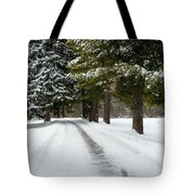 Road To Bishop's House Tote Bag