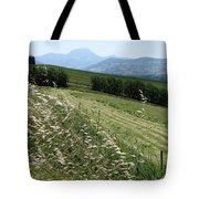 Road To Cingoli Tote Bag