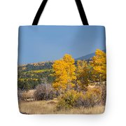 Road To Hart Prairie Tote Bag