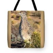 Roadrunnner At The Petroglyphs Tote Bag