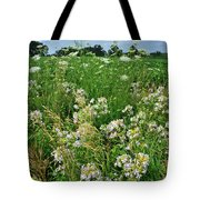 Roadside Bouquet Of Wildflowers In Mchenry County Tote Bag
