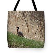Roadside Rooster Pheasant Tote Bag