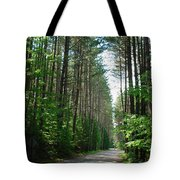 Roadway At Fish Creek Tote Bag