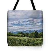 Roan Mountain 1 Tote Bag