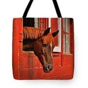Roan Red Tote Bag