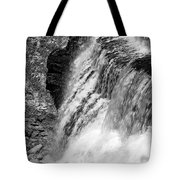Roar Of The Falls Tote Bag