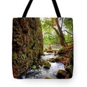 Roaring Spring Tote Bag