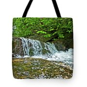 Roaring Through The Woods Tote Bag