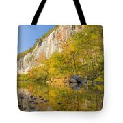Roark Bluff Reflections Tote Bag
