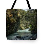 Rob Roy Stream New Zealand Tote Bag