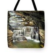 Robert H. Treman State Park Gorge Upper Falls Tote Bag
