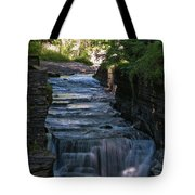 Robert Treman 0512 Tote Bag