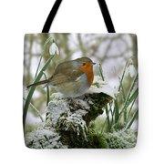 Robin And Snowdrops Tote Bag