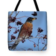 Robin Eating A Red Berry Tote Bag