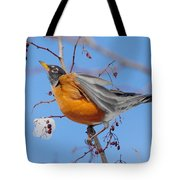 Robin Eying Berries Tote Bag