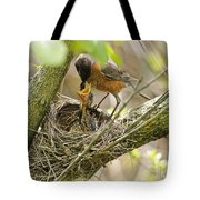 Robin Feeding Young Tote Bag