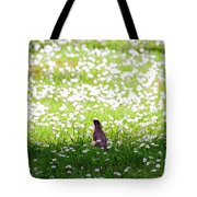 Robin In A Field Of Daisies Tote Bag