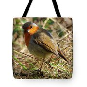 Robin In Hedgerow 3 Tote Bag