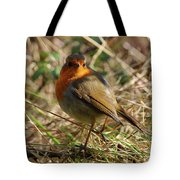 Robin In Hedgerow 2 Inch Donegal Tote Bag