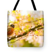 Robin In Spring Blossom Cherry Tree Tote Bag