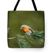 Robin In The Garden Tote Bag