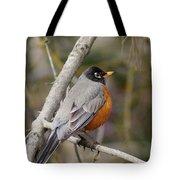 Robin In Tree 2 Tote Bag