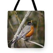 Robin In Tree Tote Bag