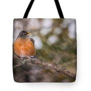 Robin In Winter Tote Bag