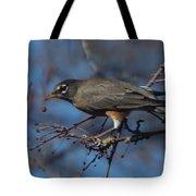 Robin Bird Tote Bag